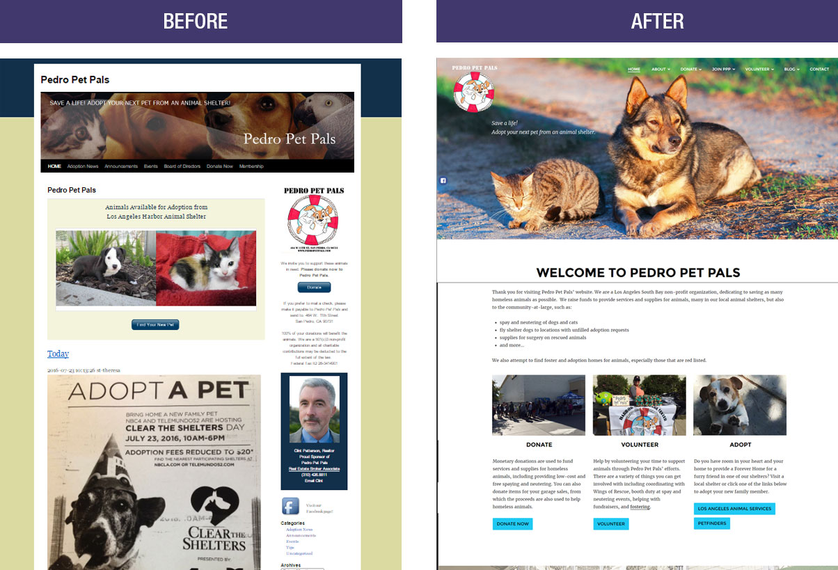 Pedro Pet Pals looks to a brighter future with their website redesign
