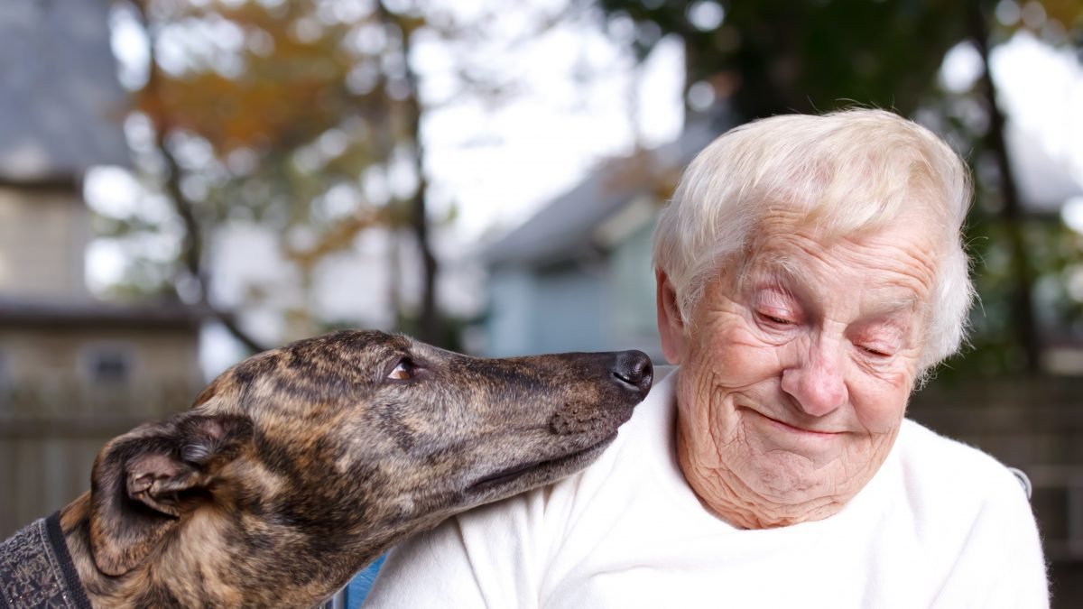 Ways Assisted Living Facilities Can Prevent Senior Social Isolation