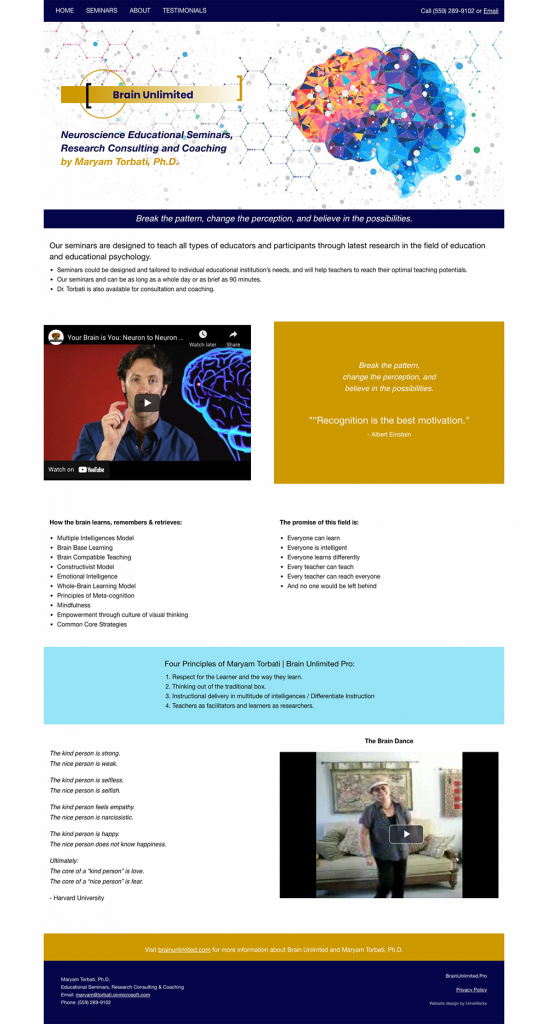Brain Unlimited website created by UmeWorks