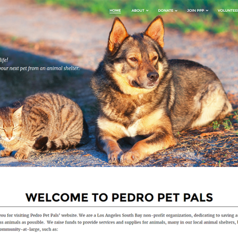 Pedro Pet Pals