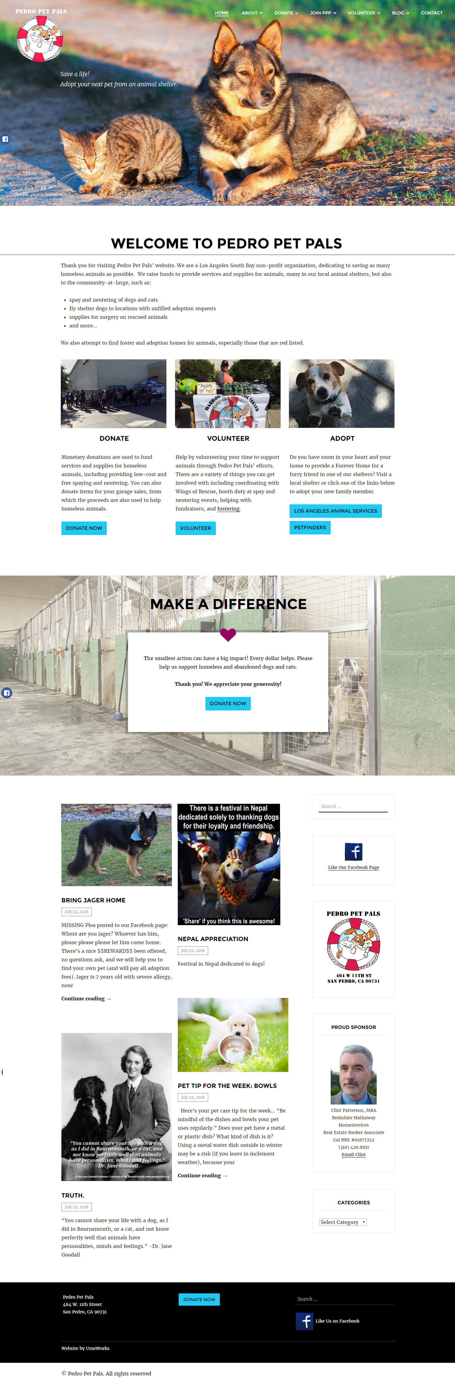 Pedro Pet Pals website design
