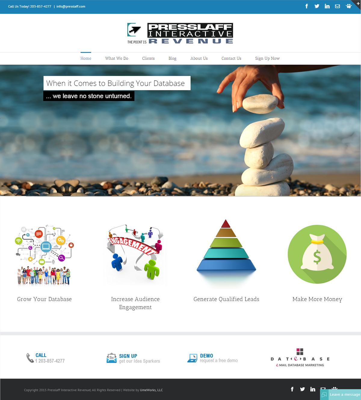 Presslaff Interactive Revenue website design