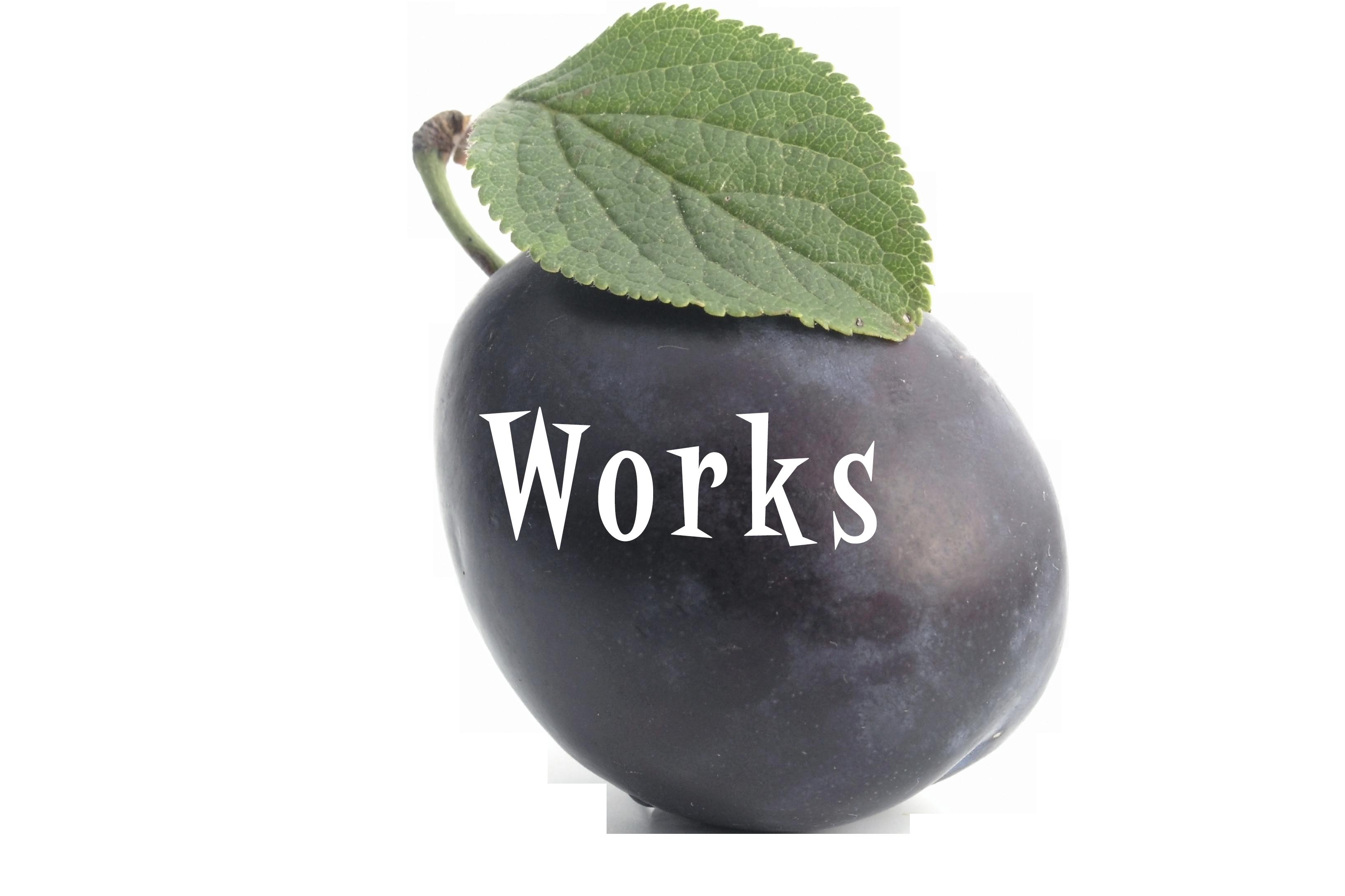 UmeWorks Torrance website designer
